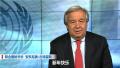 联合国秘书长新年号召团结:世界可以变得更安全