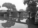 宁波300余岁古桥孤存拆迁地块,民间人士疾呼保护
