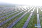 国办:布局建设一批国家农业高新技术产业示范区