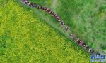 北京农业普查数据出炉:40多万北京人从事农业生产