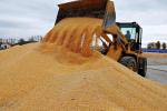 黑龍江省糧食産能不斷提升 連續7年居全國首位