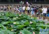郑州市明年6月底前主城区新建公园游园800个