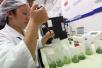冰城12区县将添粮食质量监测站 加强重金属、农残等检