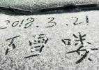 阳春三月 绍兴山区迎来首场春雪