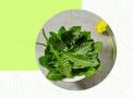 这9种野菜放心采!