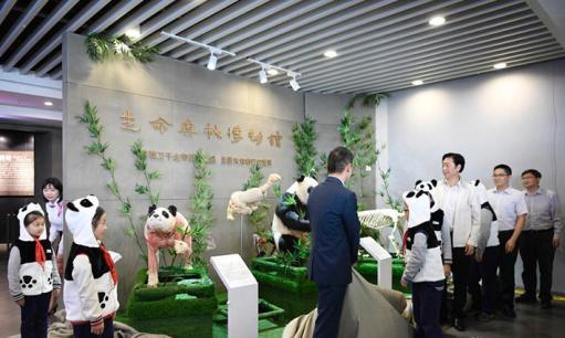 全球首只生物塑化大熊猫标本亮相成都