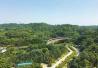 四川省唯一林业融资示范项目在乐山推进 投资20余亿元