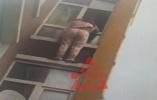 妻子欲跳楼被丈夫拽住僵持窗外 民警调来举高车救援