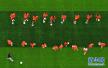 男子看世界杯玩赌球 2万元找专家预测不料被骗
