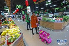 """郑州这家智慧农贸市场鸡和鸽子住上""""三室一厅"""""""