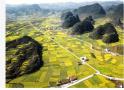 改革开放40年伟大成就:中国农村贫困人口减少7.4亿人