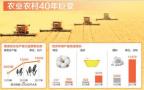 目标:更强更美更富——中国农村改革开放四十年速写