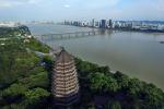 拥江发展怎么干?20个国际城市市长和代表来杭共商大计