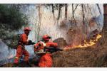 22岁,不能承受之痛!凉山大火30条生命呼唤消防职业化