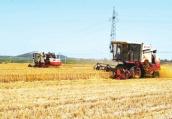 三夏河南降水较常年同期偏少两成 与麦收天气整体有利