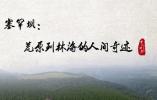 【奋进的中国精神】塞罕坝:荒原到林海的人间奇迹