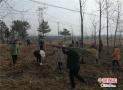 河南商城县张家前:践行绿色发展理念  带领乡亲脱贫致富