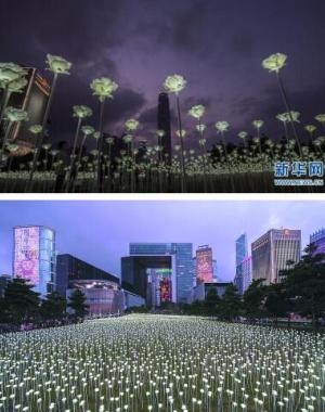 情人节香港玫瑰灯海点亮维港