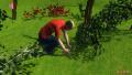 3D:农民挖3株兰草被判刑 称不服判决但不上诉