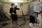 女蛇王养七千条蛇