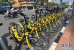 共享单车的出路有哪些:合作并不是唯一选择!