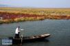 环保部:京津冀等15个省份已划定生态保护红线