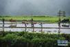 德州今年农业水价综合改革面积46万亩