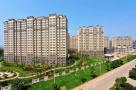 未来一个月南京将拍11幅地块 江北一幅医院用地后天开拍