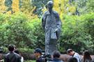 孤独300年小诗《苔》一夜爆红 写诗的袁枚是个有故事的杭州人