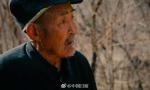 88岁老人坚持造林30年
