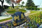 泰顺各地兴起生态安葬 文明祭扫方式引领社会风尚
