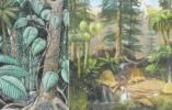 寻解地球上规模最大的生命灭绝之谜