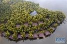 绿色的生机,百姓的生计——模范践行生态文明理念的湖州之路