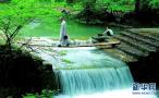 山东版全域旅游信息服务系统上线
