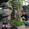 花甲男子用废弃物打造2千平花园 请大家免费住(图)