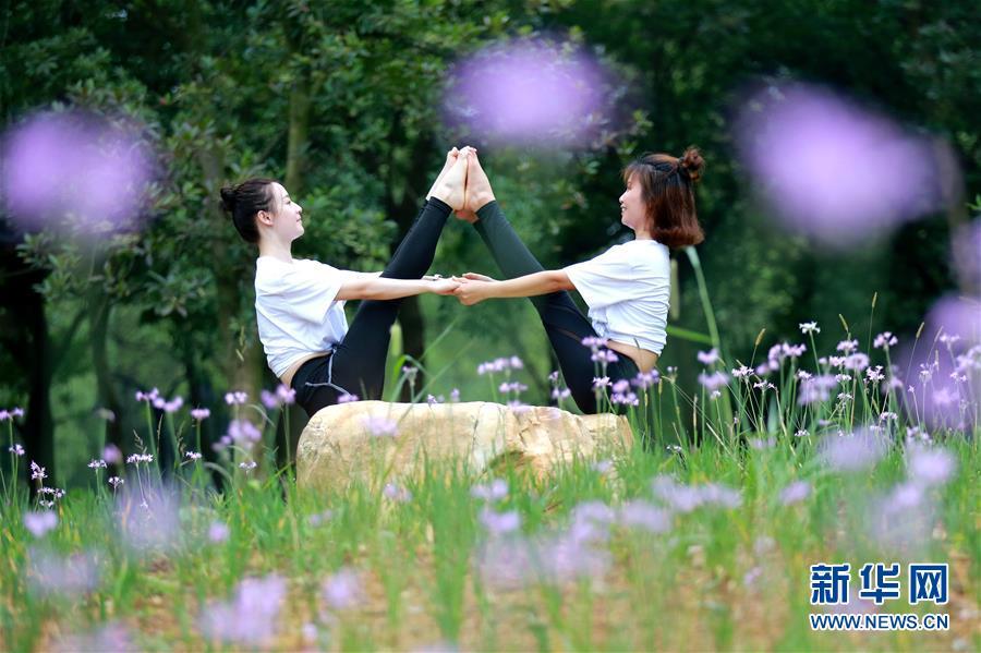 舒展身姿练瑜伽