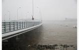 """台风""""安比""""在上海崇明岛登陆 最大风力10级"""