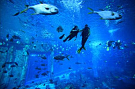 好玩又减压!6米水下组团打麻将 黄龙跳水馆脑洞大开