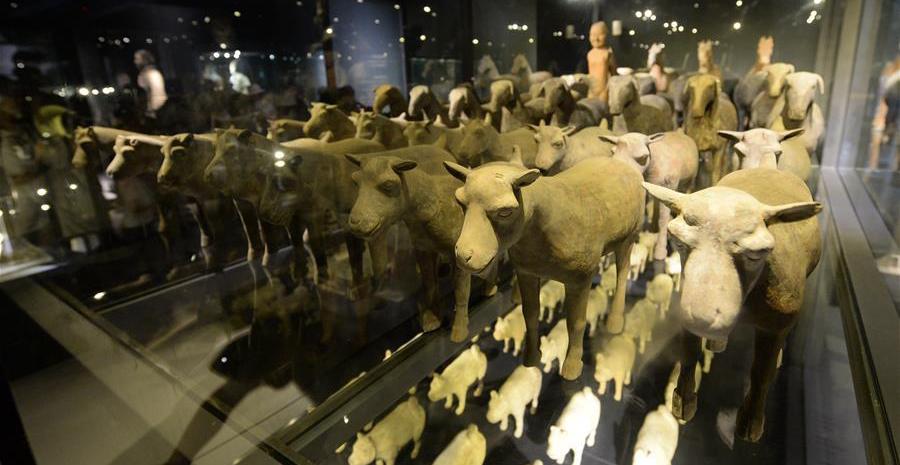 跨越时空的邂逅——秦始皇帝陵与汉景帝阳陵出土陶俑展