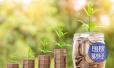 山东将在部分市县开展农业保险创新试点
