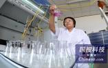 """李开复:中国科技创业者的最大优势是""""多疑"""""""
