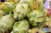水果没熟透,为什么不建议放冰箱里?