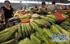 上周郑州市鸡蛋价格略降 叶类蔬菜价格下降