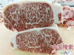 用品牌和品质诠释匠心 河南郏县红牛产业发展前景广阔