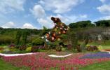 秋風颯爽,桂花飄香,我在江南花卉藝術展覽會等你!