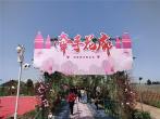 河南安阳:玫瑰杜庄助力乡村振兴