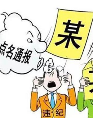 河北通报5起不正之风和腐败问题