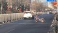 再次刷新三观!共享单车被扔到路上:险遭汽车碾压