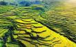 尤溪联合梯田 申报全球重要农业文化遗产