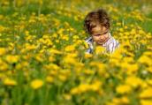 三月渐暖 春游须防花粉过敏和动物咬伤
